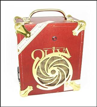 C  B  Gitty Cigar Box Amplifier: Oliva V Series: Amazon co uk