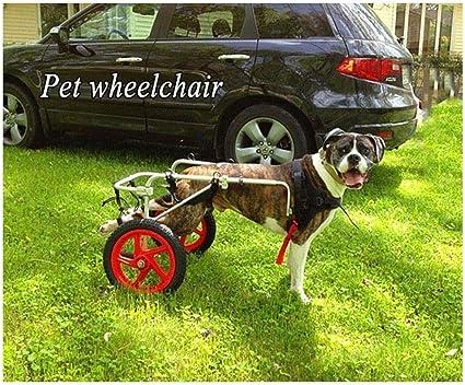 Silla Ruedas para Perros Mascotas/Coche para Discapacitados para ...