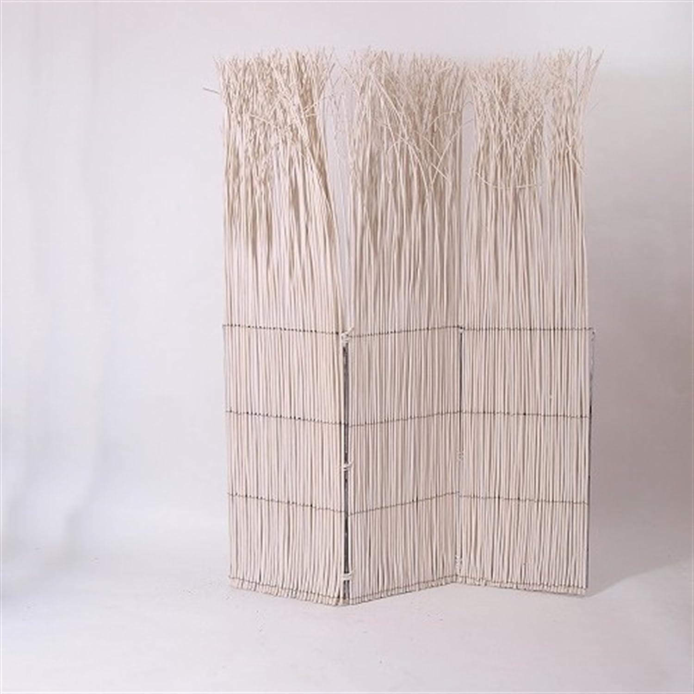PARAVENTO NATURE | bianco, 160 cm, pascolo | muro divisorio XTRADEFACTORY GMBH