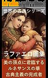 ラファエロ画集: (世界の名画シリーズ)
