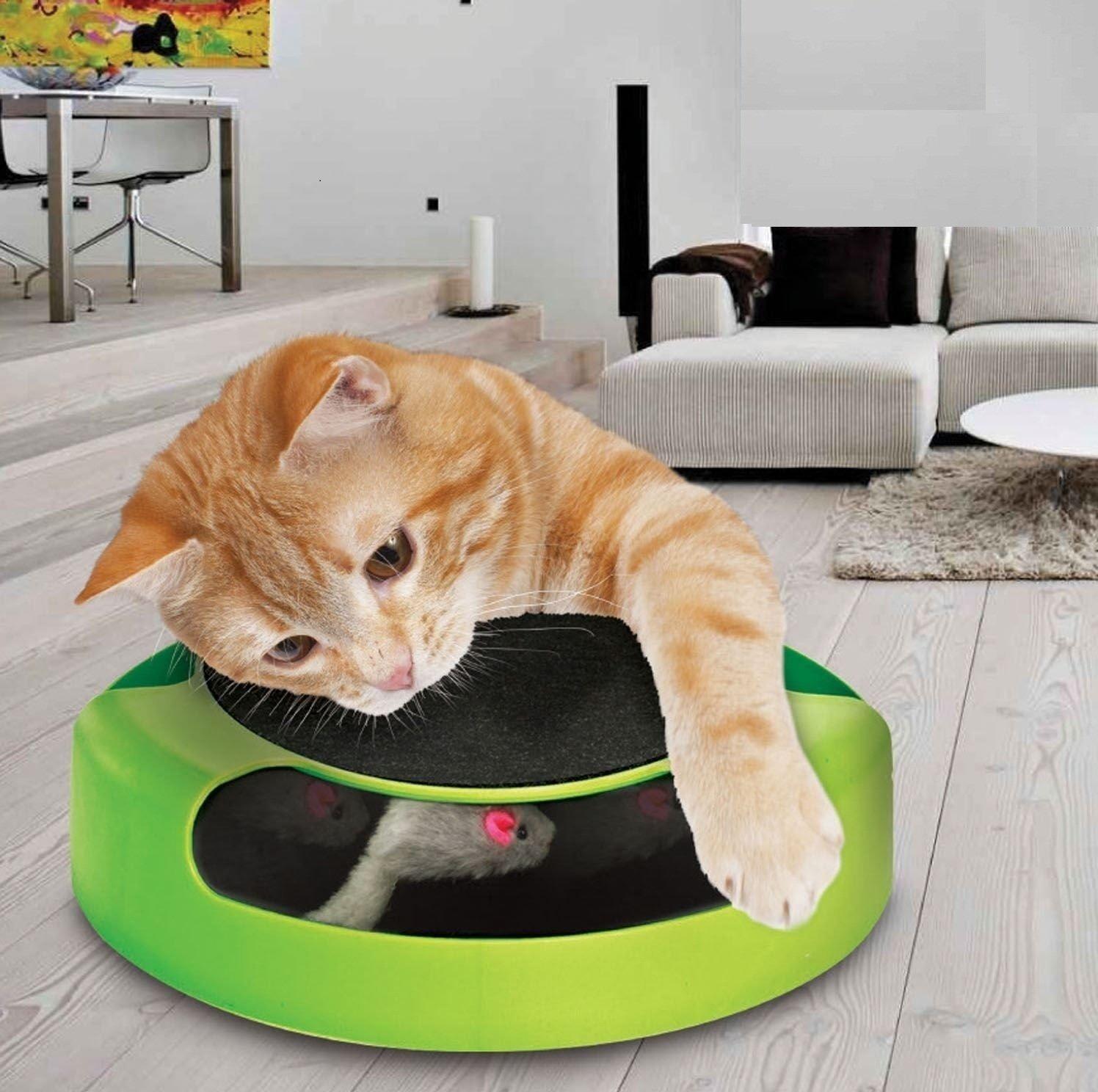 Prime Paws Juguete Interactivo Meow para Gato o Gatito para atrapar el ratón, tapete Mullido para rascar: Amazon.es: Productos para mascotas