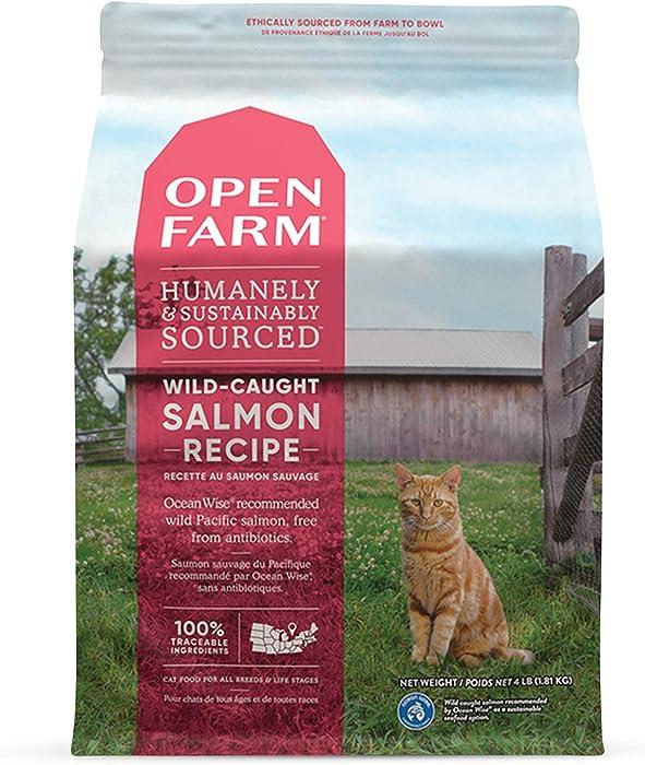 Top 10 Organic Dry Food