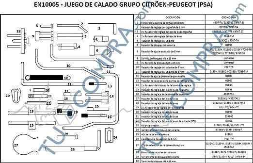 JUEGO DE CALADO PARA GRUPO PSA Cambio Distribución: Amazon.es ...