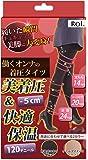 (ロイ) Roi 働くオンナの 着圧タイツ 美着圧-5cm 120デニール タイツ (L:身長155-167cm/ヒップ92-100cm, ブラック)