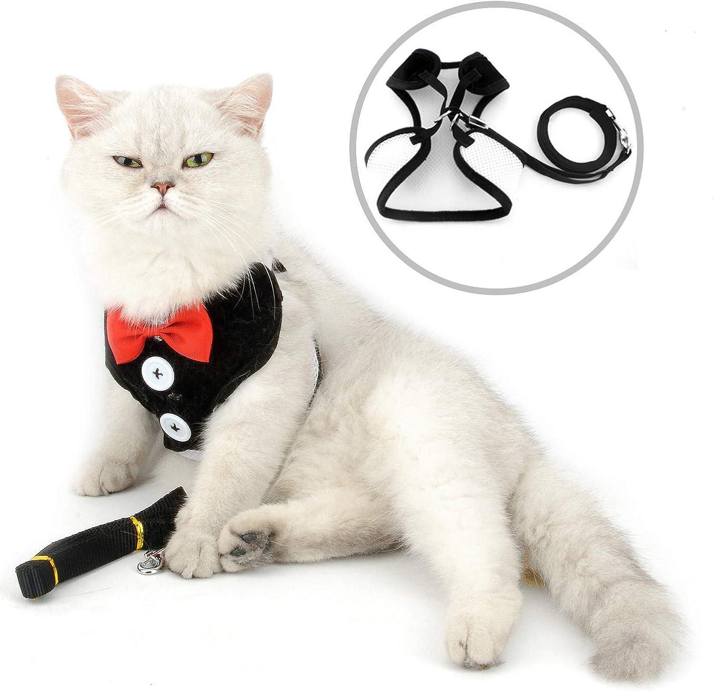 smalllee_lucky_store - pajarita arnés y correa para gato ...