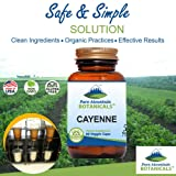 Cayenne Pepper Capsules - 90 Kosher Vegan Caps