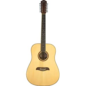 12-String Dreadnought Guitar