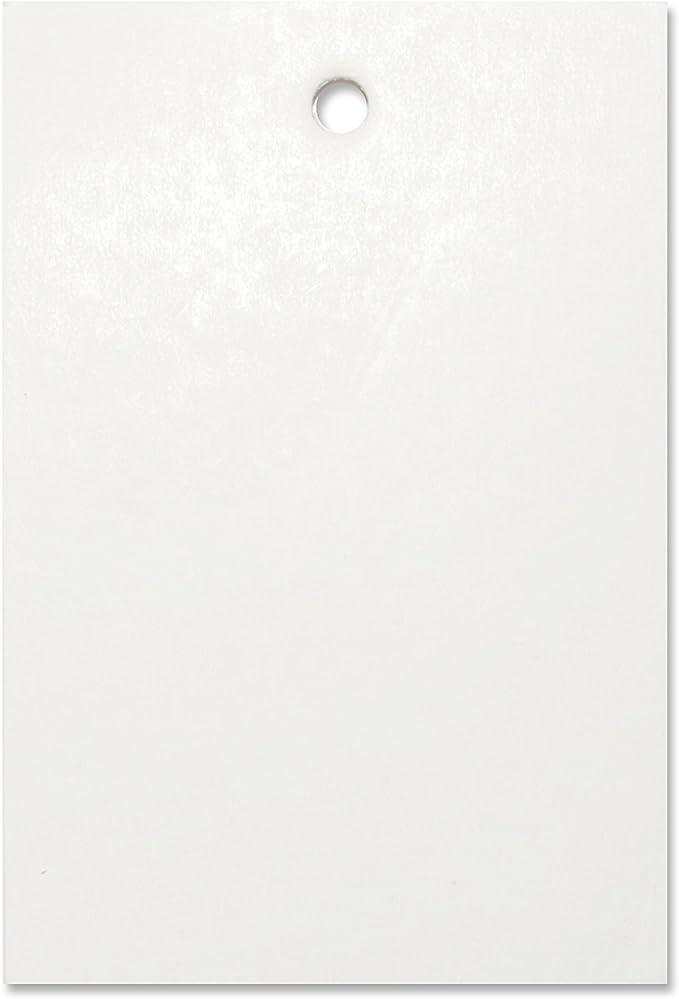 500er Pack Orange Preisschild Etikett Karte Hang Tag 60mm x 40mm