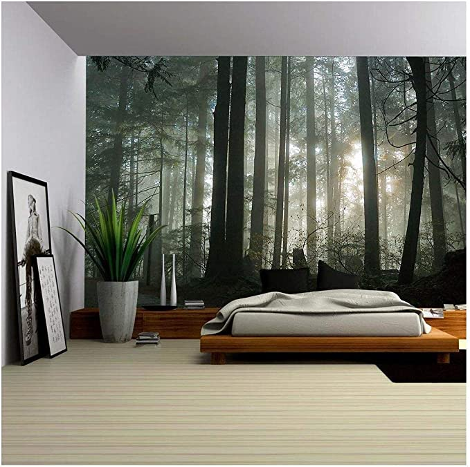 Details about  /Photo wallpaper Wall mural Removable Self-adhesive Beech forest