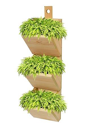 Jardinière murale 3 niveaux en bois pour herbes plantes 65 cm x 30 cm