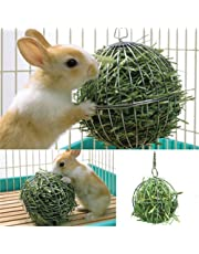 Sanwooden Funny Feed Dispenser Ball Toy Hollow Sphere Rabbit Stainless Steel Pet Feed Dispenser Ball Toy with Chain Hook Pet Supplies
