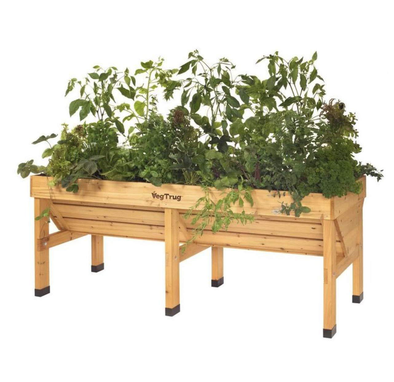 vegtrug cover