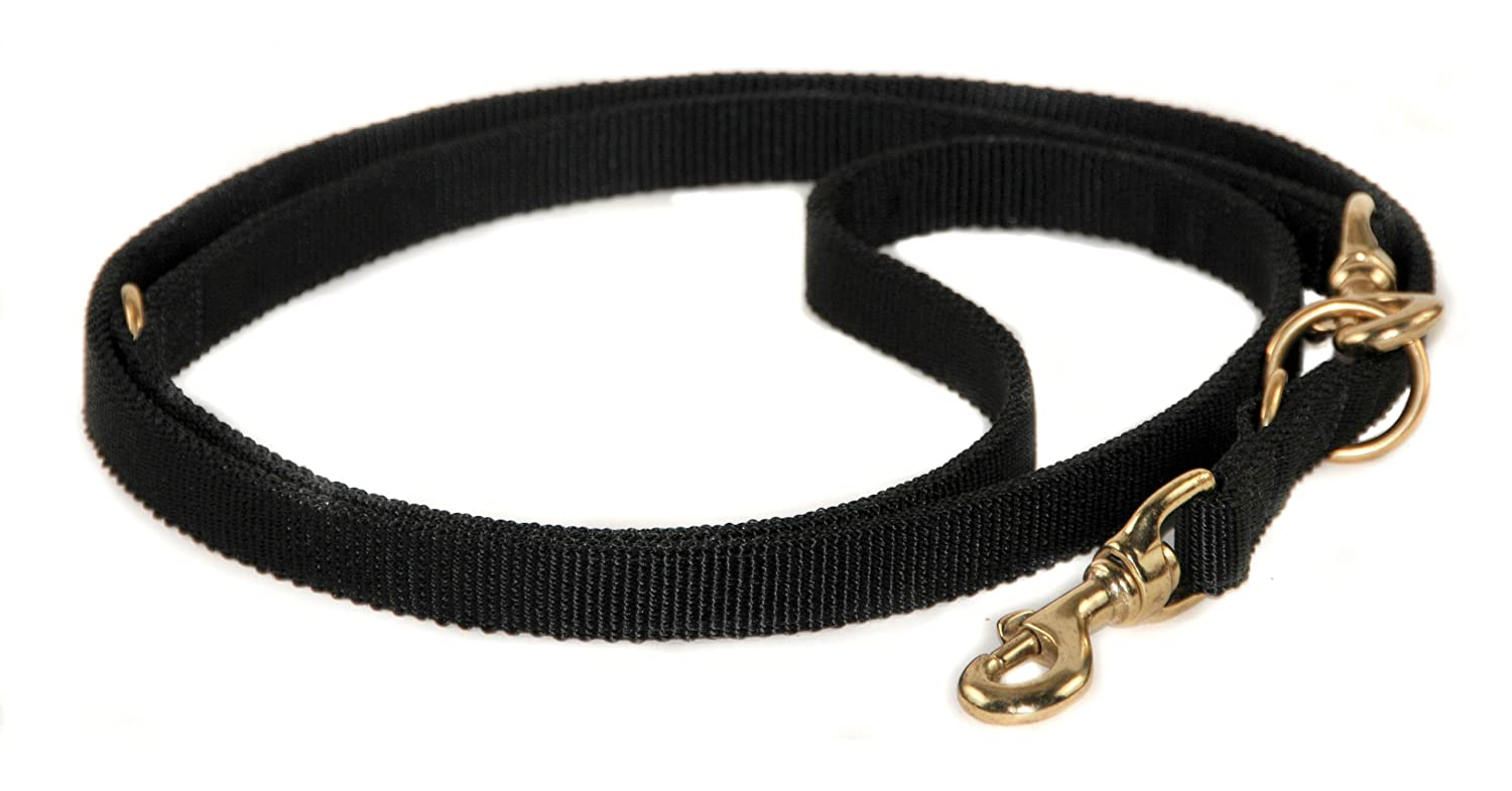 Dean and Tyler Nylon Night Dog Leash, Black 7-Feet by 3 4-Inch Width With Solid Brass Hardware.