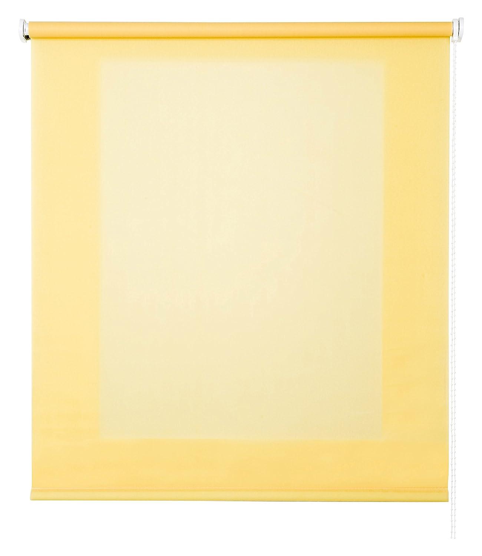 Store Enrouleur Store Basic translucide –  , Couleur Jaune 75x6x250 cm Citronier NAUMOIA S.L. 11112