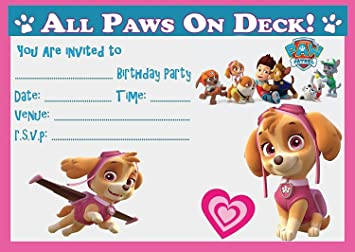 PAW PATROL SKYE GIRLS CHILDRENS BIRTHDAY PARTY INVITATIONS INVITES X 20 PACK