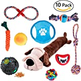 Dog Toys 10 Pack Gift Set, Variety Pet Dogs Toy Set for Medium to Small Doggie