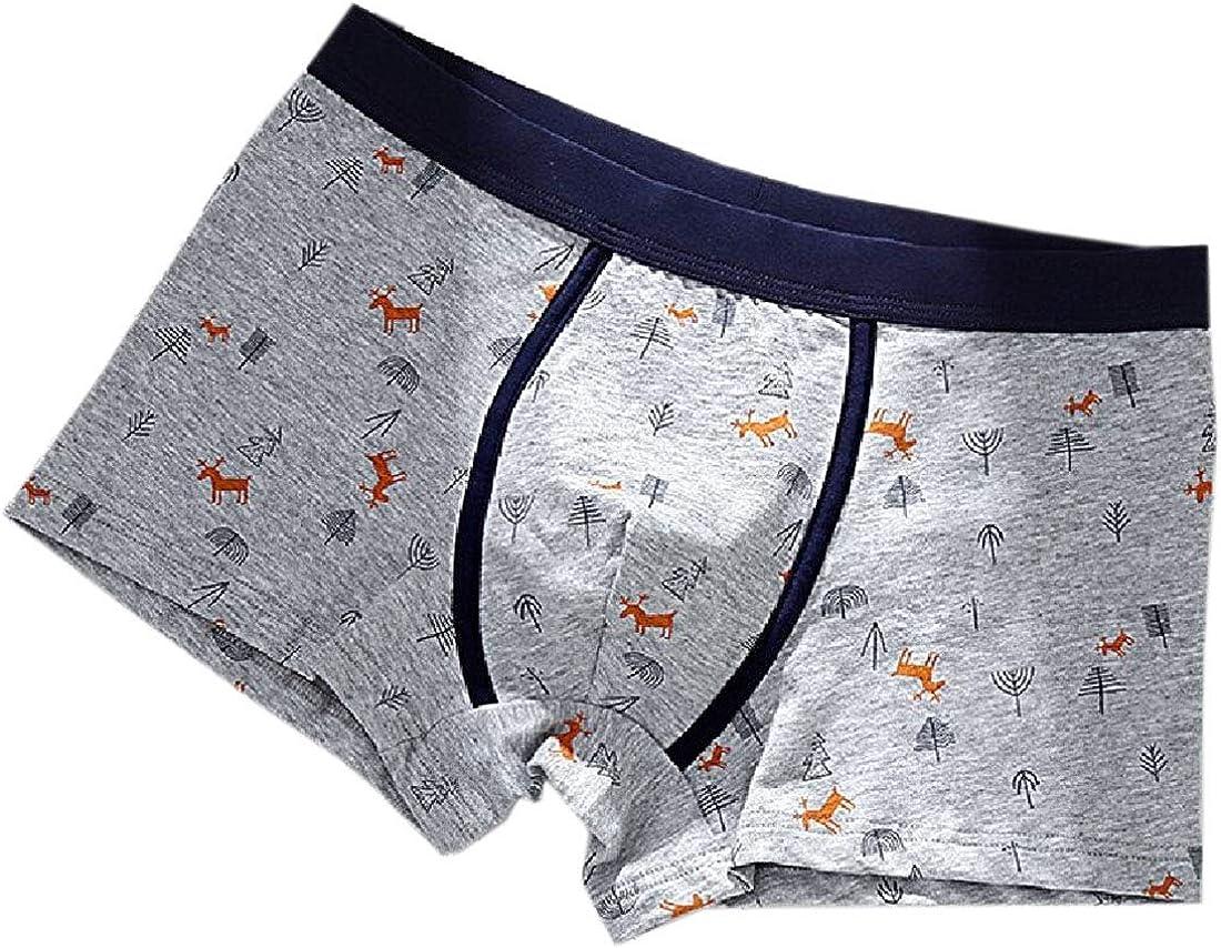 Jereee British Flag Mens Underwear Soft Polyester Boxer Brief for Men Adult Teen Children Kids