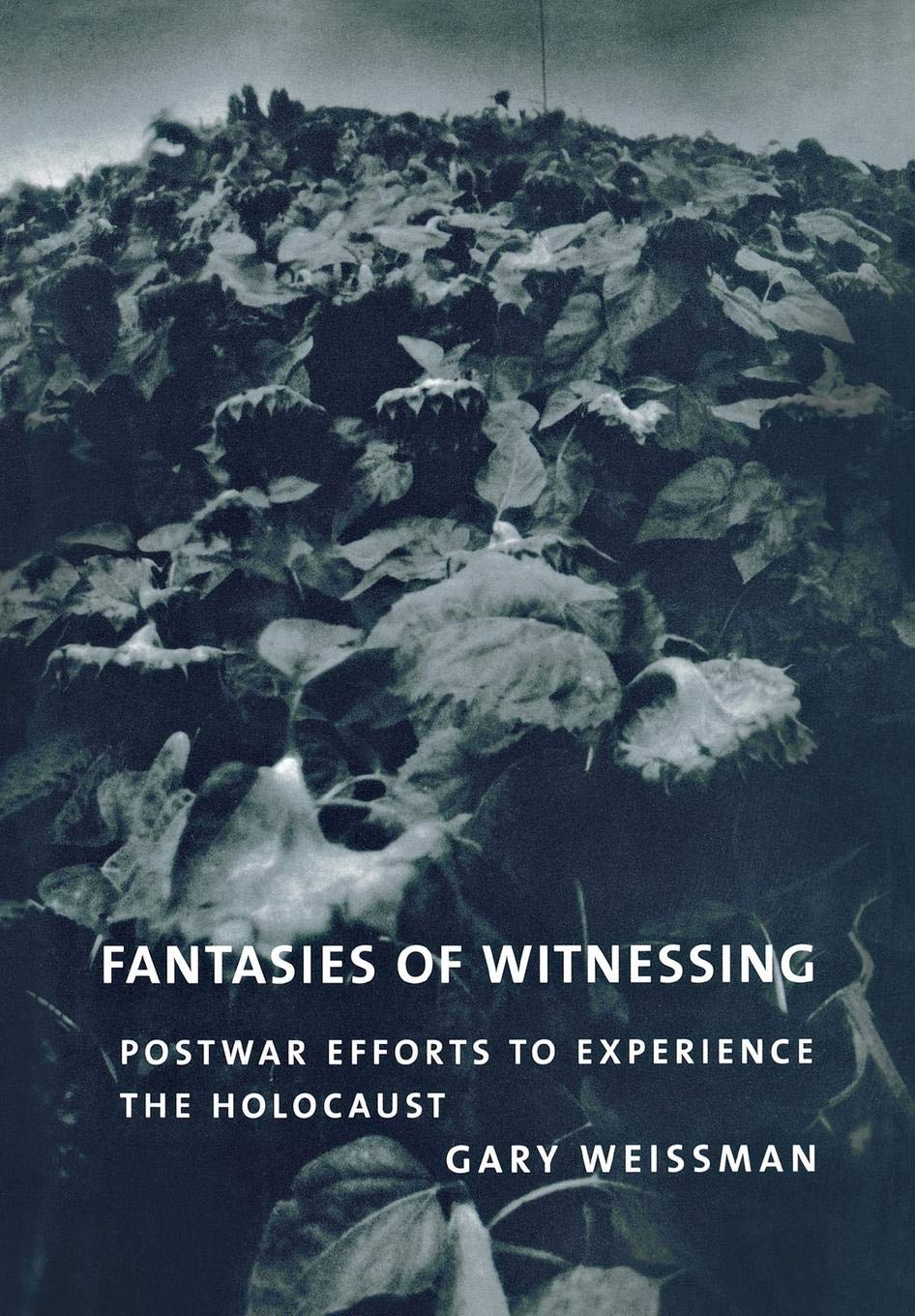 Fantasies of Witnessing: Postwar Efforts to Experience the Holocaust by Brand: Cornell University Press
