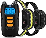 Flittor Dog Training Collar, Shock Collar for Dogs with Remote, 2