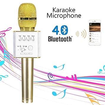 d7f753a7efe Bluetooth Karaoke Microphone