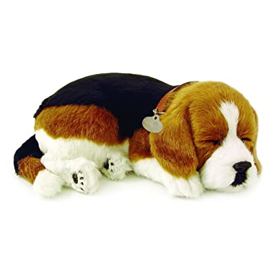 Perfect Pets International Sleeping Beagle Plush: Toys & Games