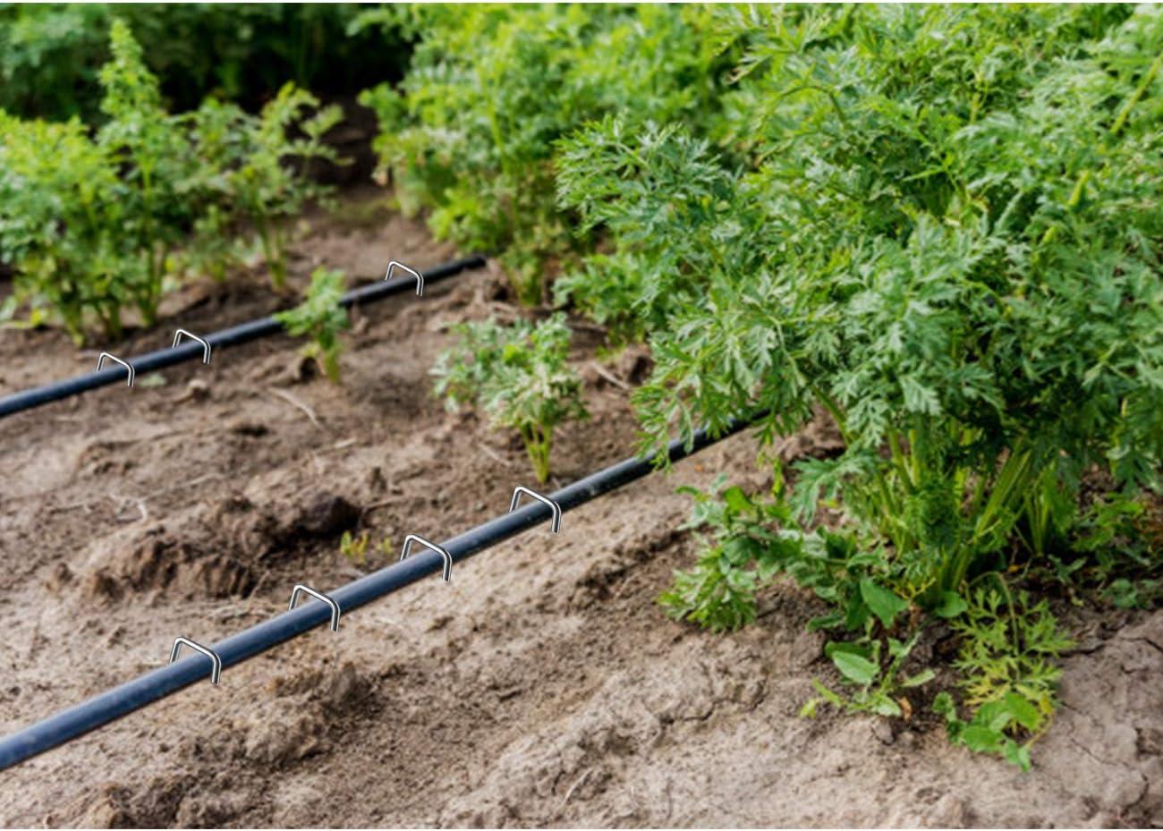 Pflanzen /Ø 3.8 MM 25 MM Breit Dauerhaft Bodenanker f/ür Z/äune Anti-rost Erdanker und Garten Heftklammern Sicherung von Unkrautvlies Schl/äuchen 200 MM Lang