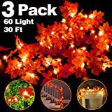 Camlinbo 3 Pack Thanksgiving Decorations Thanksgiving Decor Pumpkin Decoration Thanksgiving Lights, 30Ft/60 LED Lighted Garla