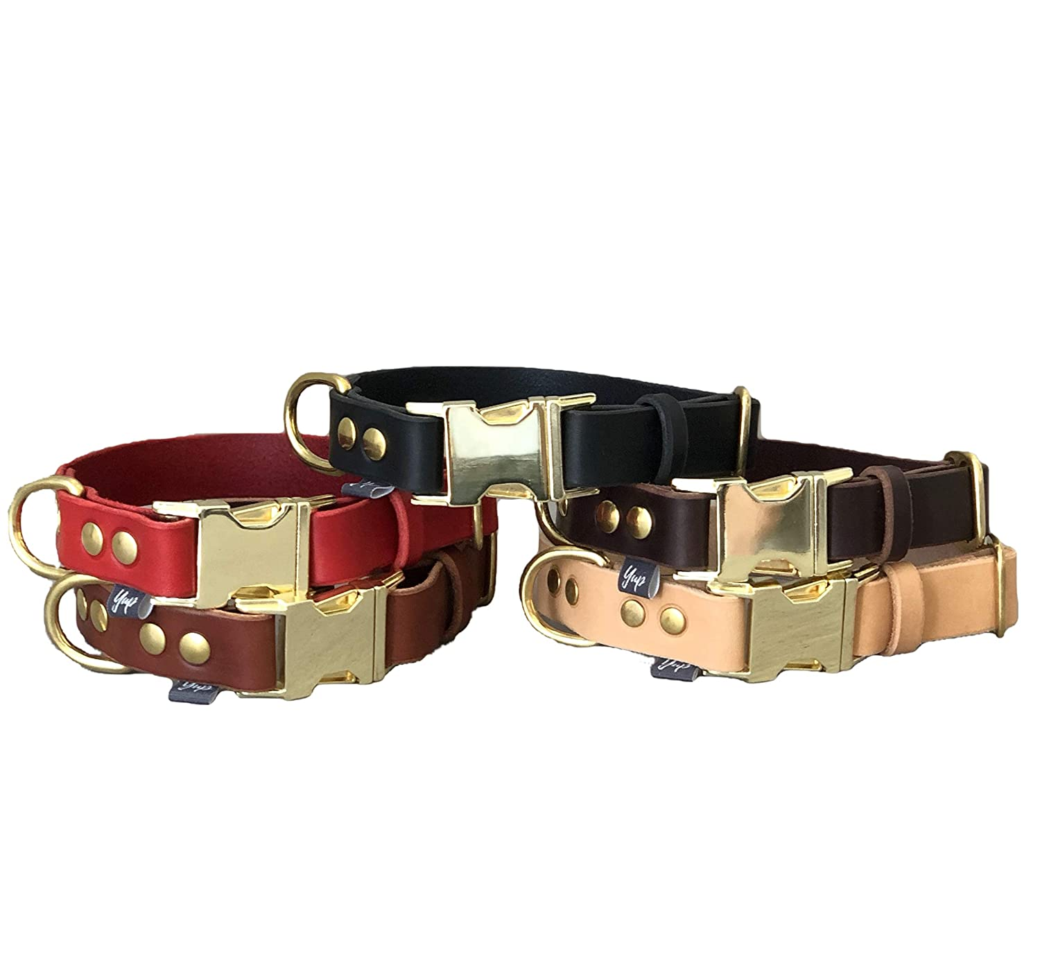 Dog Collar Quick Release Dog Collar in Tan Leather and Brass Hardware for Large and Medium Dogs Colorful Dog collar