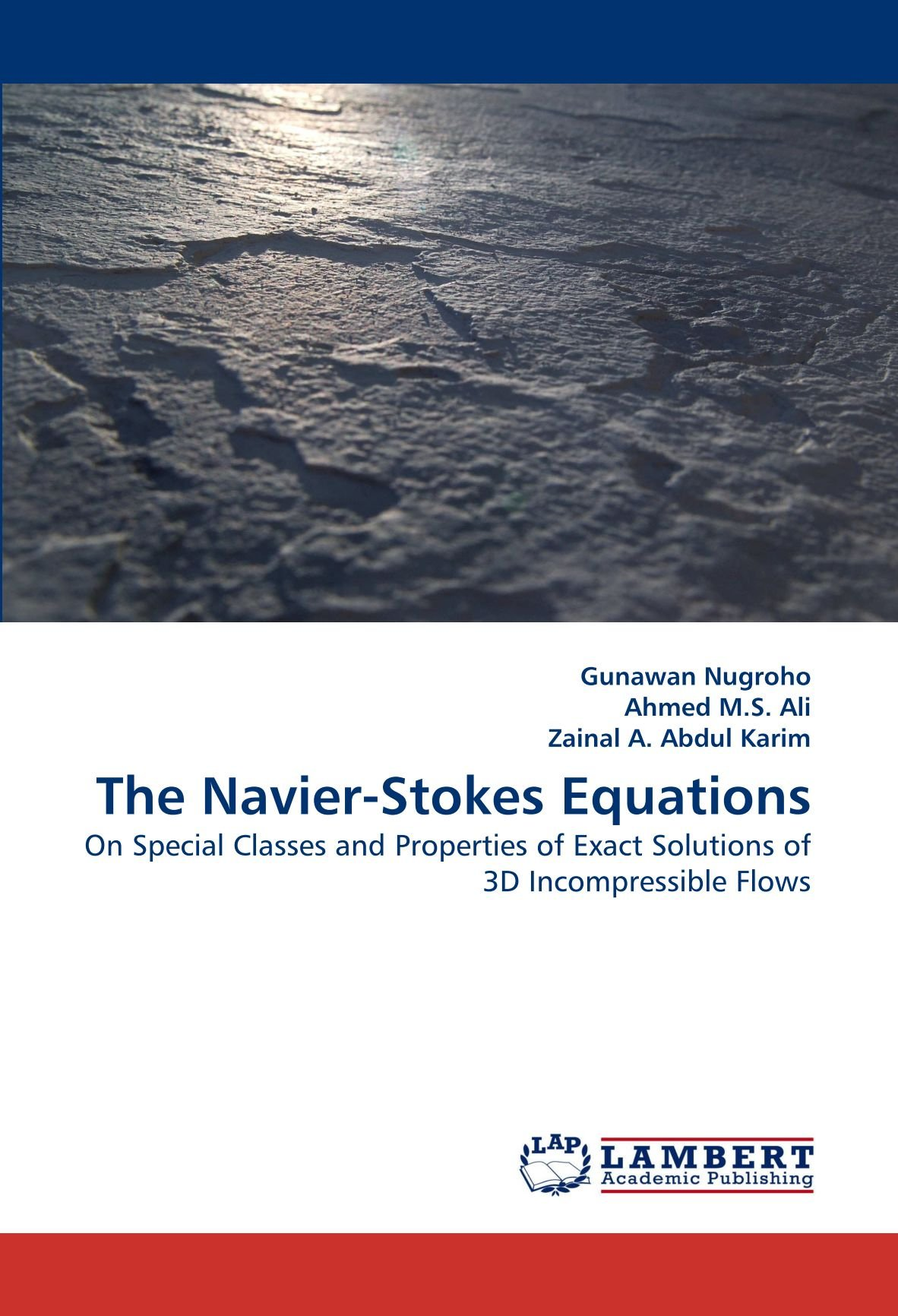 The Navier-Stokes Equations: On Special Classes and Properties of Exact Solutions of 3D Incompressible Flows pdf epub