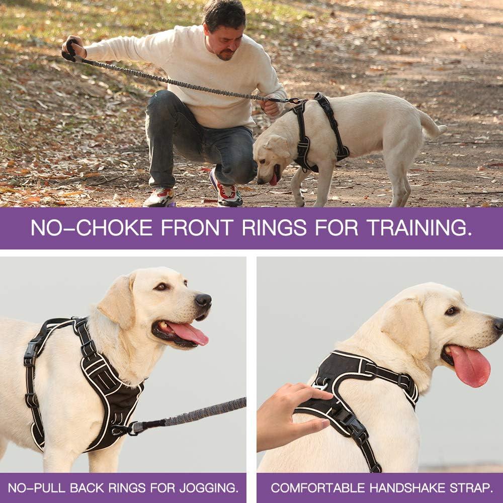 Heele Harnais pour chien sans traction r/églable en ext/érieur 3M r/éfl/échissant Oxford Gilet pour chien facile /à contr/ôler 6 couleurs 4 tailles pour petits et moyens chiens