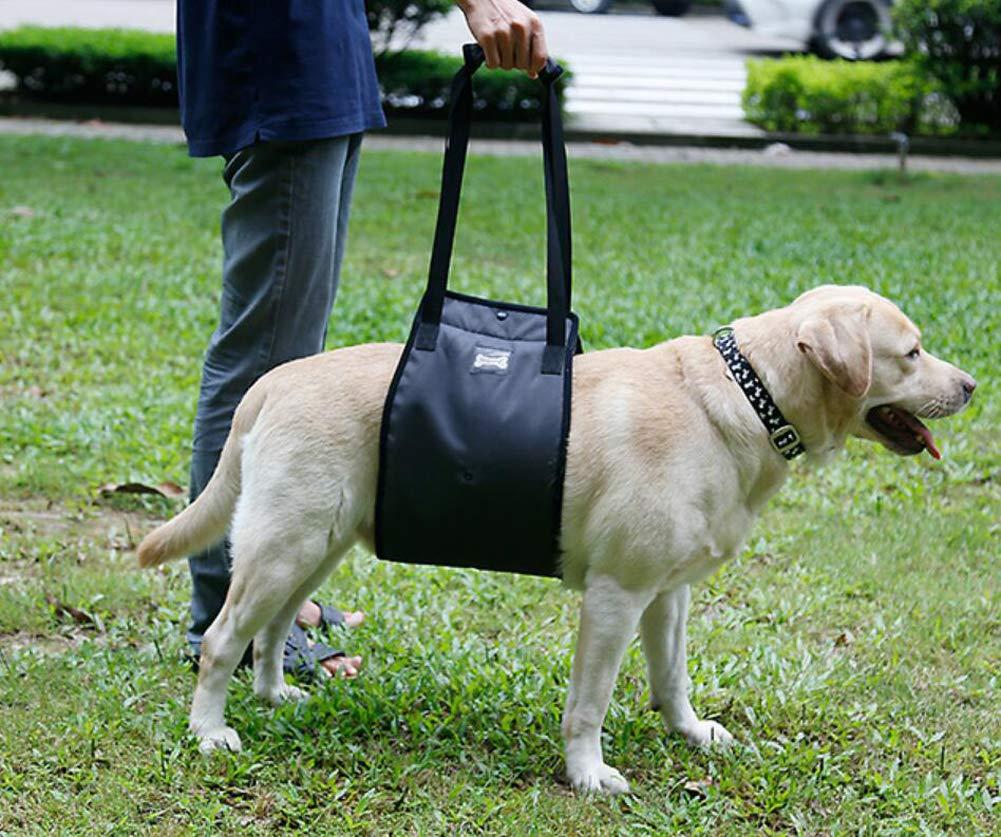Ylen Supporto per Cane Imbracatura di Riabilitazione Assistere Sling per Cani Anziano Disabilit/à Ferito