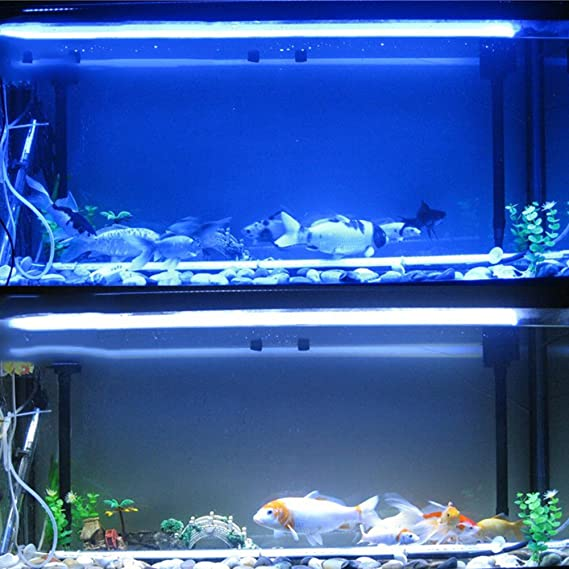 Lámpara de acuario Control remoto LED de luz de acuario Fish Tank Luz de iluminación subacuática sumergible Clip lámpara 18CM blanco: Amazon.es: Iluminación