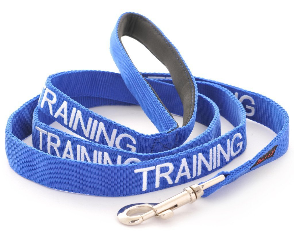 4 Foot Leash TRAINING bluee color Coded Nylon 2 Foot 4 Foot 6 Foot Or Hands Free Coupler Luxury Leash (Do Not Disturb) PREVENTS Accidents by Warning Others of Your Dog in Advance  (4 Foot Leash)