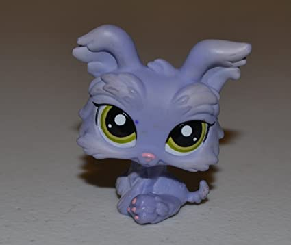 Amazoncom Yorkie 1611 Littlest Pet Shop Retired Collector Toy