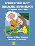 Beamer Learns About Traumatic Brain Injury: The Beamer Book Series