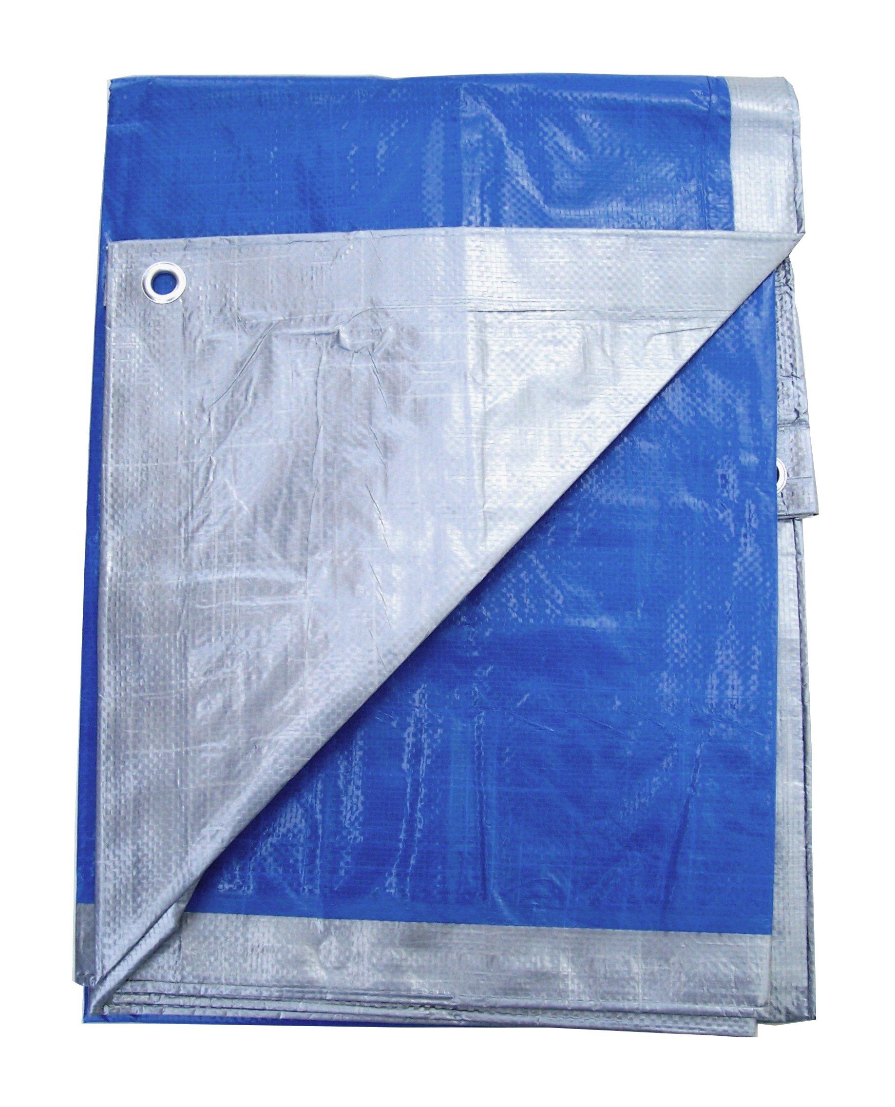 12' x 28' Silver & Blue Reversible Premium Tarp by Fabrimetrics Inc
