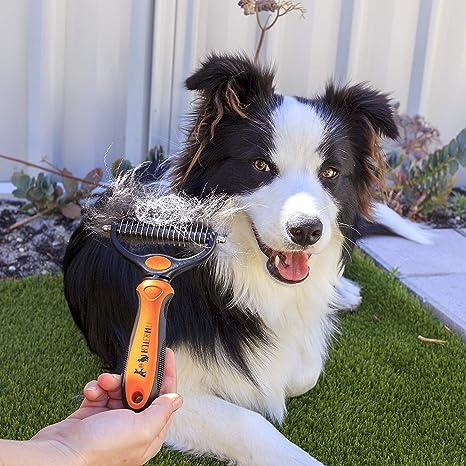 BELLE&BLU Cepillo para Perros o Gatos de Pelo Largo o Corto Peine para Mascotas Elimina Pelo Muerto, Nudos y Enredos | Rastrillo para Perro y Gato ...