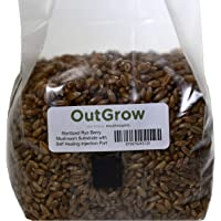 Sterilized Rye Berry Mushroom Substrate with Self Healing Injection Port (1)
