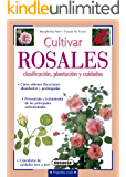 Cultivar rosales, clasificación, plantación y cuidados (Pequeñas Joyas)