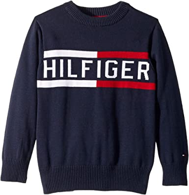 8e1191660 Image Unavailable. Image not available for. Color: Tommy Hilfiger Kids Baby  Boy's Hilfiger Logo Sweater (Toddler/Little Kids) Swim Navy