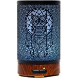 Ultrasonic Cool Mist Aromatherapy Diffuser Atomiser 100ml Metal Aroma Essential Oil Humidifier with Waterless Auto Shut-Off Protection,7 Colors Changed LED for Home Office SPA (Owl)