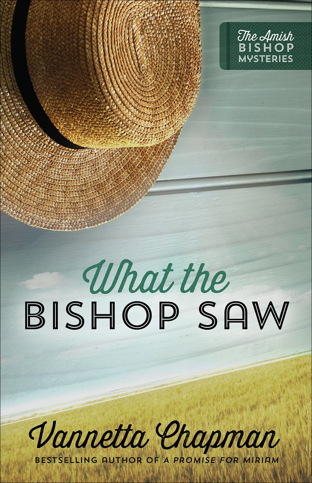 Read Online What the Bishop Saw (The Amish Bishop Mysteries) pdf