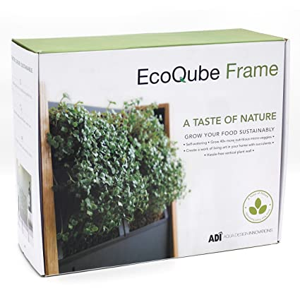 EcoQube Frame - Easy Sprouting Kit Garden for Sprouting Seeds, Herbs,  Microgreens, and Broccoli Sprouts (EcoQube Frame (with Broccoli))