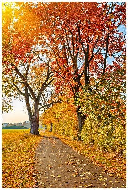 Wall Ario Jardín Póster De Exterior de Póster – Otoño de bosque Camino con hojas de