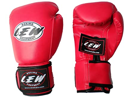 LEW Training Boxing Gloves