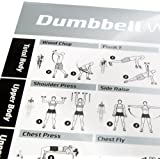 Dumbbell Workout Exercise Poster - NOW LAMINATED - Strength Training Chart - Build Muscle, Tone & Tighten - Home Gym Weight Lifting Routine - Body Building Guide w/ Free Weights