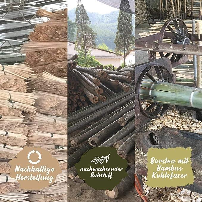 4 Family de Pack ♻ bambú cepillo de dientes con puro de bambú madera ✮ Vegano) ✮ biodegradable ✮ 100% libre de BPA ✮ cerdas con carbón vegetal de bambú ...
