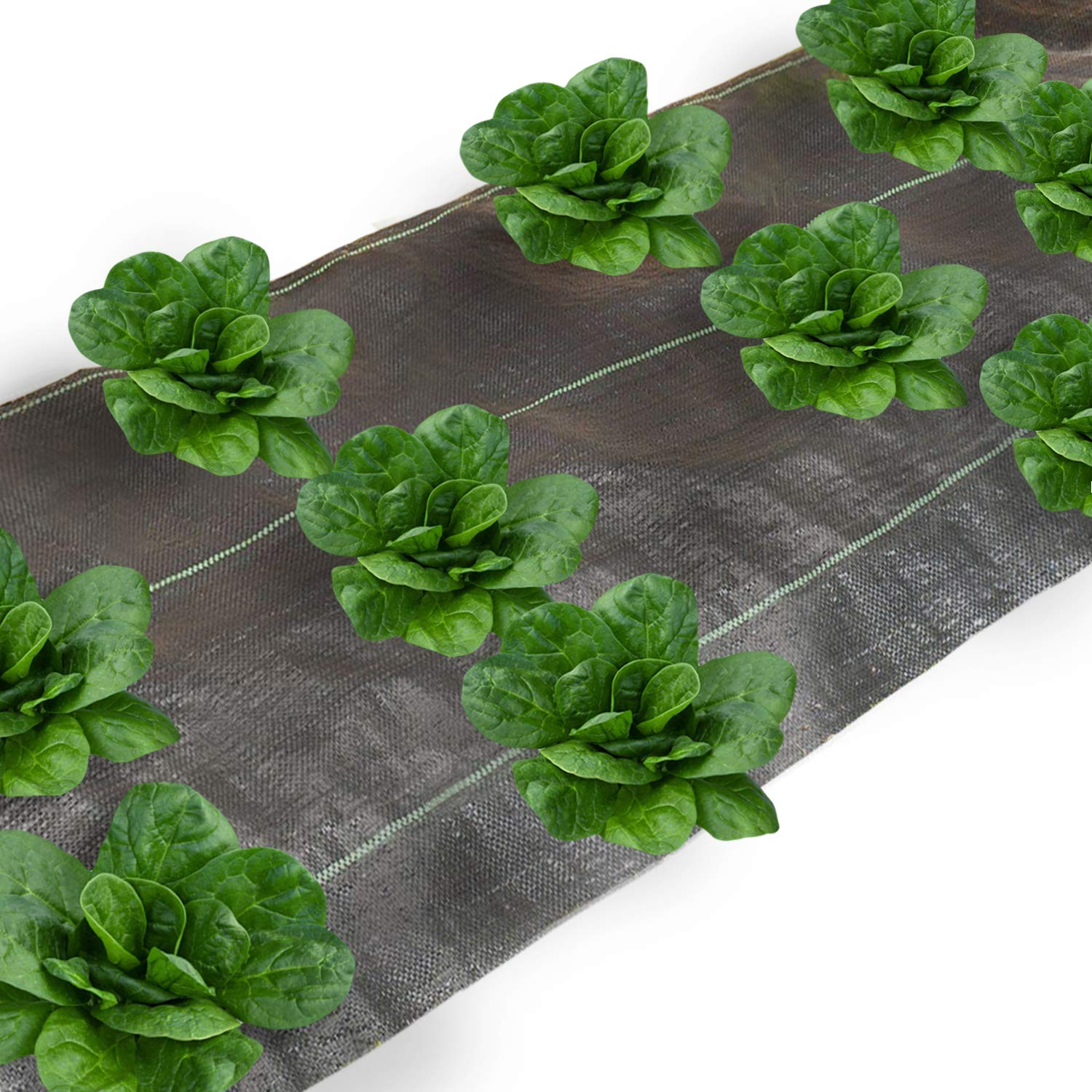 Agfabric Landscape Ground Cover 4x300ft Heavy PP Woven Weed Barrier for Vegetables,Soil Erosion Prevention and UV stabilized, Plastic Mulch Weed Block