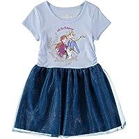 Disney Frozen Toddler Baby Girls Elsa Mesh Long Sleeves Tutu Dress Blue/Grey