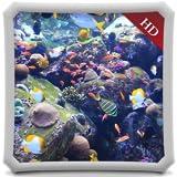 Aquatic Beauty HD - AQUARIUM Wallpaper & Themes